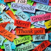 Plusy i minusy zakładania szkoły językowej